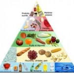 besoins alimentaire